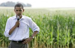 Obama_in_the_corn
